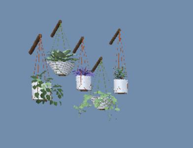 现代绿萝吊篮盆栽